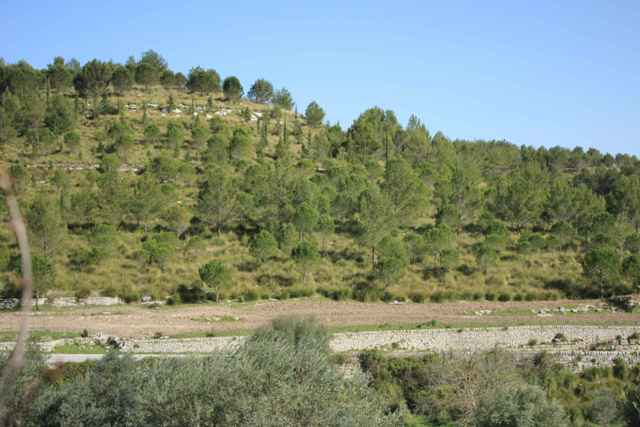 panoramic land building for sale ragusa